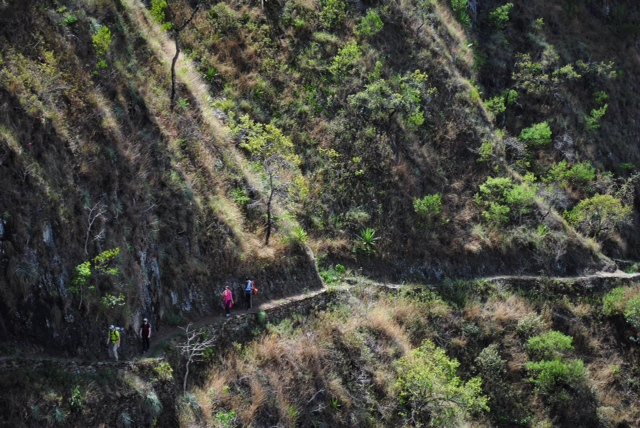 Jungle Inca Trail (5)